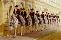 The Royal Riding School, Jerez
