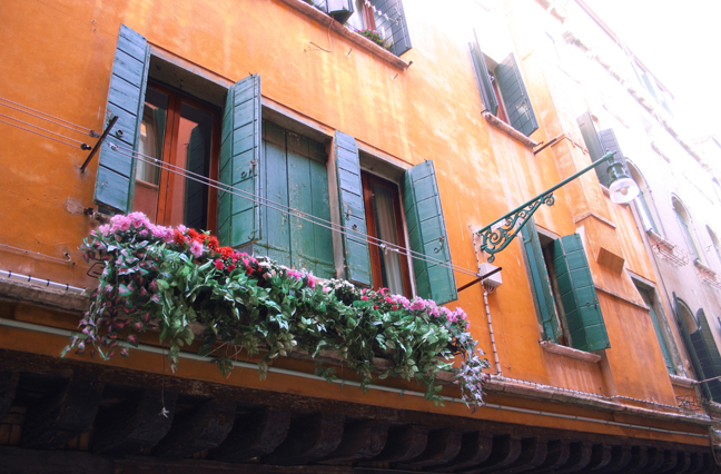 Window Flowers in Florence