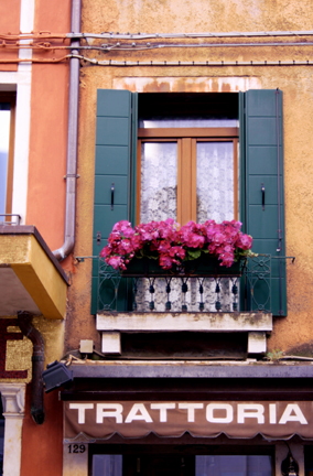 Floral Window Above Trattoria