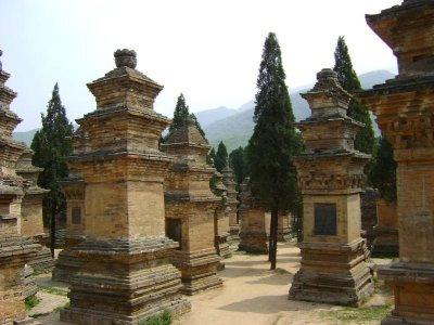 16 Pagoda Forest2