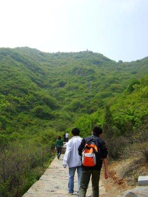 17 Path Damo2