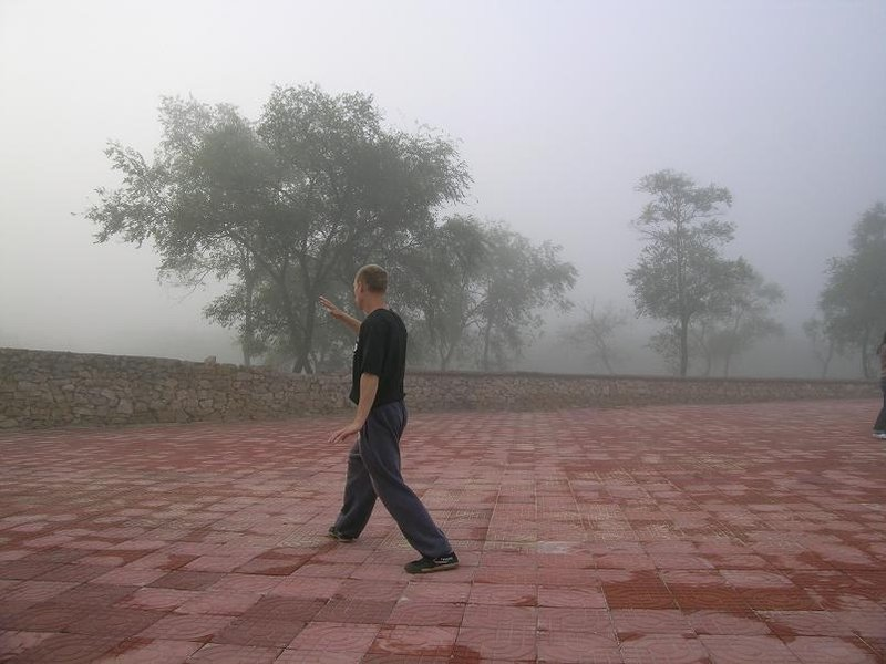 Harry in the Mist