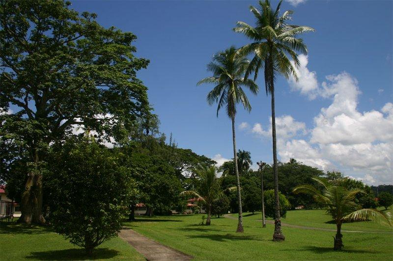 Park in Clayton