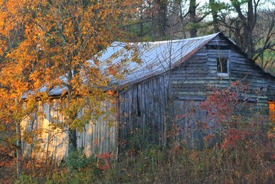 barn in field, Edneyville, NC