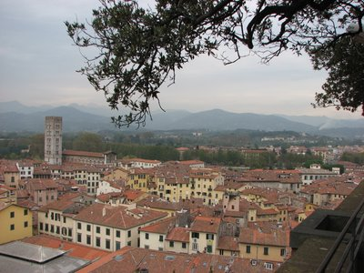 Lucca_View.jpg