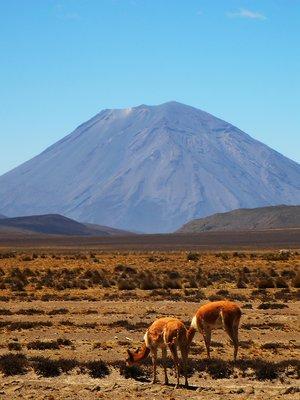 Colca_Canyon-Peru.jpg