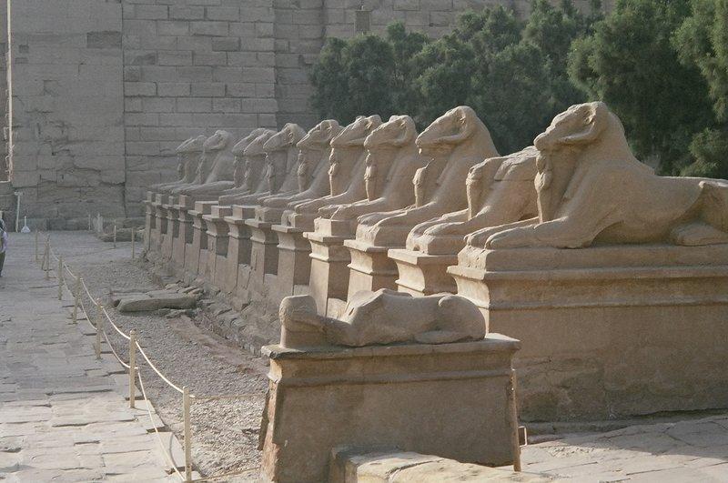 Karnak Ram Sphinx