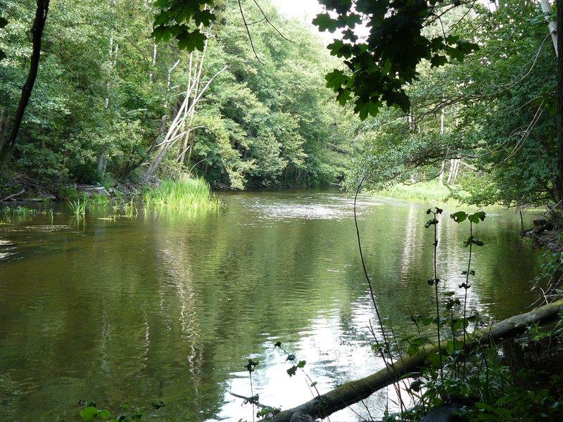 Wadag river near Olsztyn #1