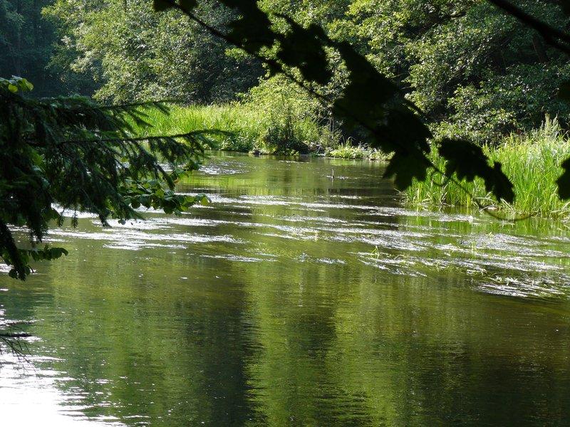 Wadag river near Olsztyn #3