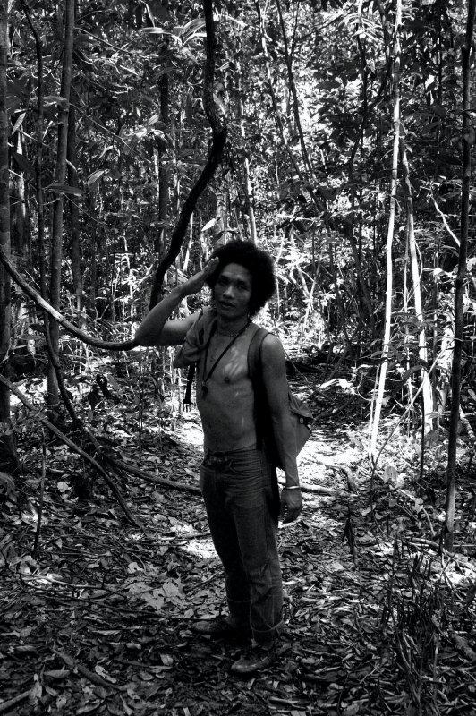 orangutan boy