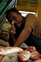 fish market luwu
