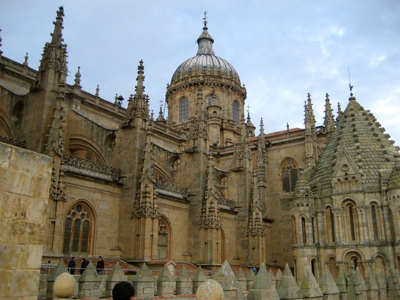 Salamanca cathedral roof top