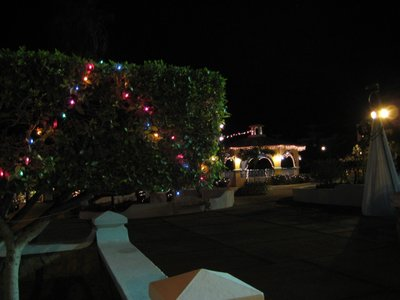0008_Christmas_Lights.jpg