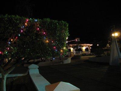 0008_Christmas_Lights.jpg