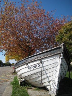 2008_10_11..nd_Tree.jpg