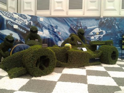 Williams F1 Hedge.  Fitting after they just won the Spanish GP a few weekends ago.