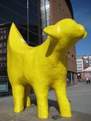 A107_Big_Yellow_Dog.jpg
