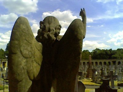 Angel and blue sky Brompton Cemetery
