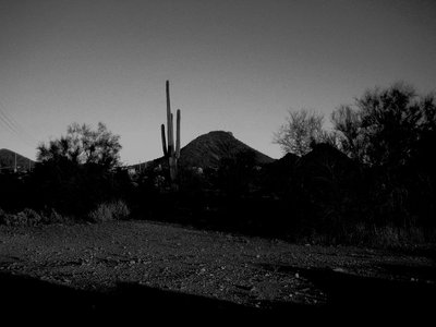 Arizona-day-1_001.jpg