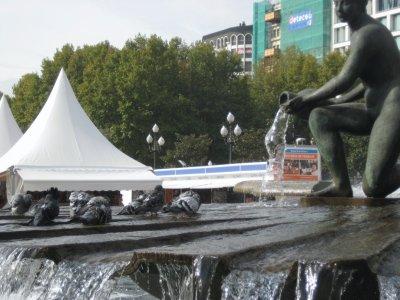 Birds bathing at Plaza de Espana