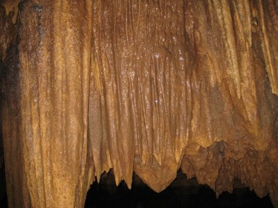 Barton Creek Cave stalagmite