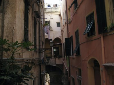 H030_Narrow_Houses.jpg