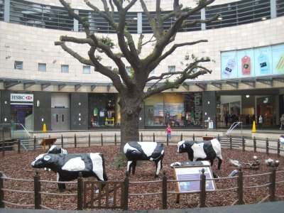 Milton_Keynes_Cows.jpg