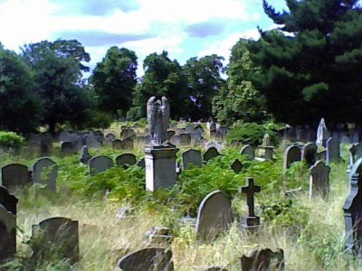 Overgrown Brompton Cemetery 3