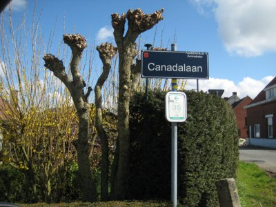 Canada Lane, Passendale