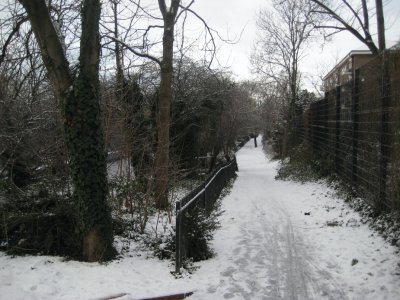 Path_Wintery.jpg