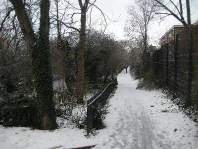 Path_Wintery.jpg
