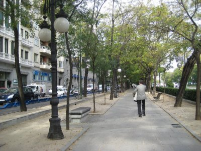 Path and Trees on Paseo de la Castellana
