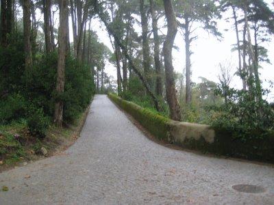 Paths_at_P.._Pena_1.jpg