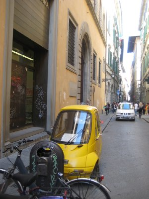 Little yellow birdie, Streets of Florence