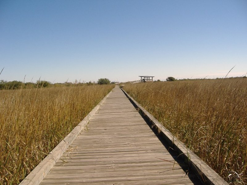 San Jacinto Marsh Boardwalk