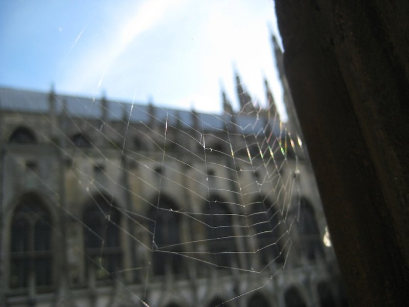 Cobwebs in the cloisters, Canterbury Cathedral