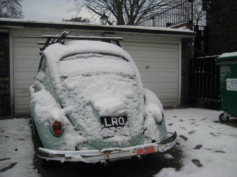 Frozen Bug