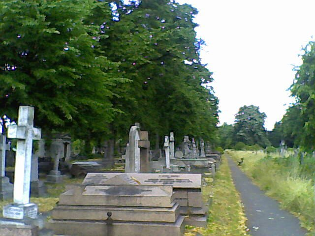 Row upon row Brompton Cemetery