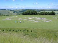 Old Sarum Cathedral from above
