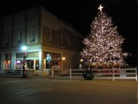 Williams main street Christmas Tree from a distance