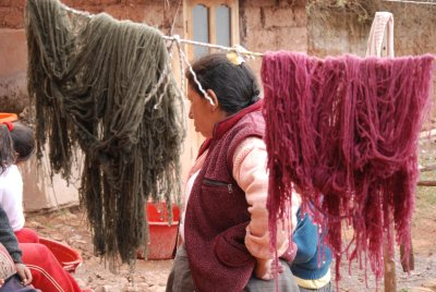 The coloured llama wool being dried