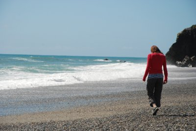 lori beach walk