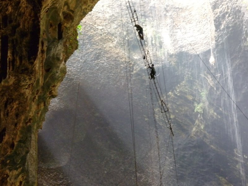 ropes in gomantong cave
