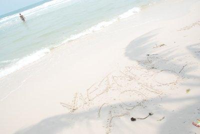 lori sand