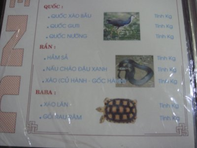 turtle menu