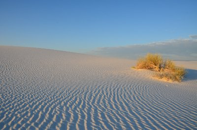 White Sands