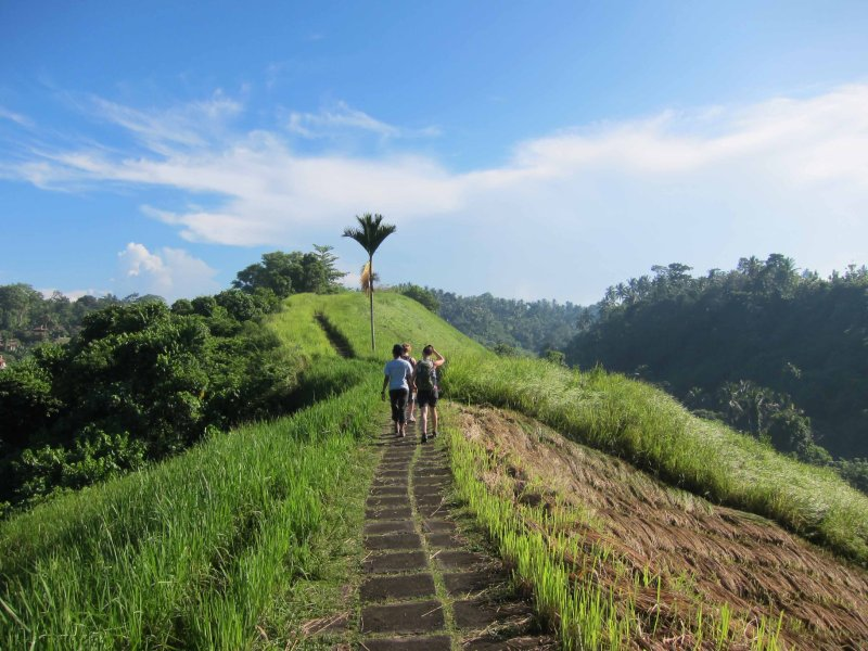 Ubud hiking 1