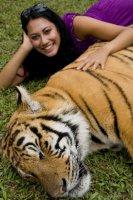 Tigers_201..22_2009.jpg