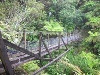 Swing_Bridge.jpg