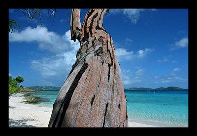 honeymoon_beach_2.jpg